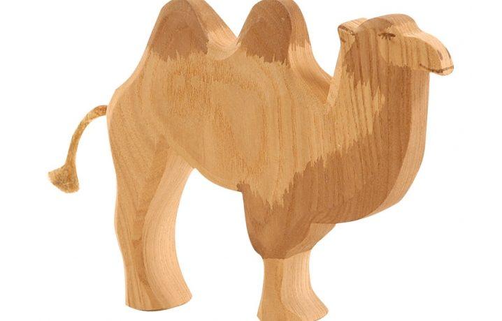 Atenció, camells i camelles!